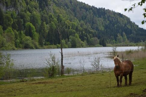 Lac d'Etival